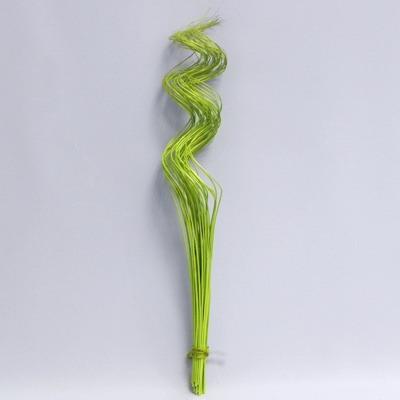 Sušina proutí kroucené 40ksx60cm zelená