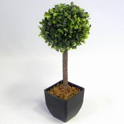 Buxus v květináči na kmínku V31cm zelená