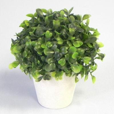 Buxus v květináči umělina V12cm zelená